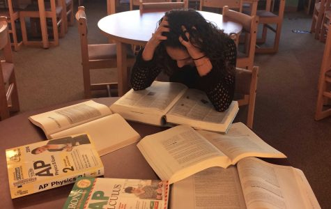 Academic Stress in High Level Classes