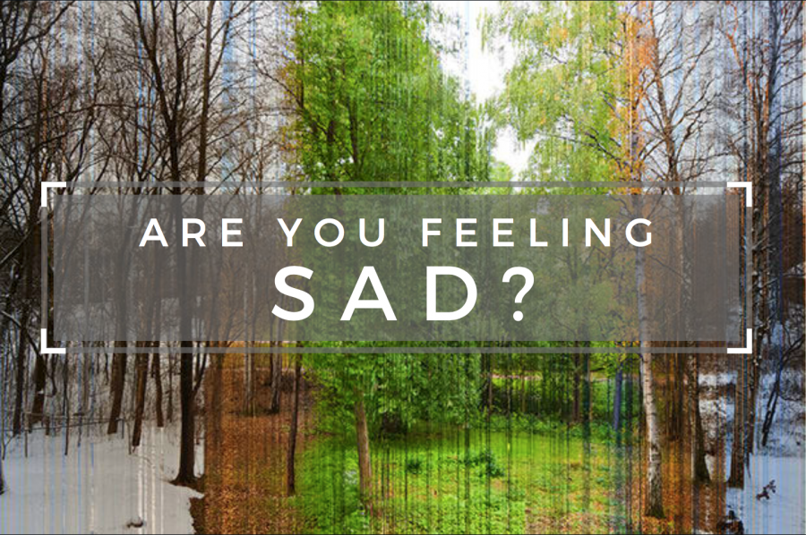 Are You Feeling SAD?