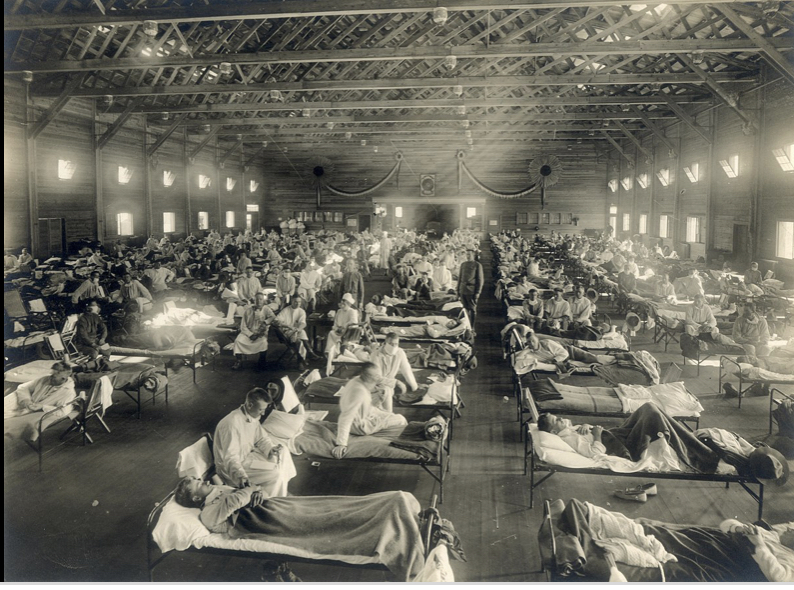 COVID-19 vs. Spanish Flu:What has actually changed in a hundred years?