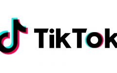 Have you heard of these 8 Tik Tok trends?